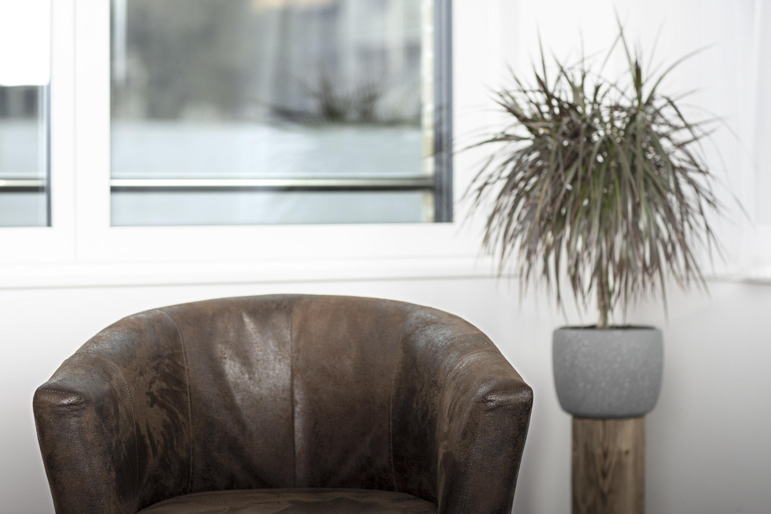 Sessel und Zimmerpflanze in einer Psychologischen Praxis
